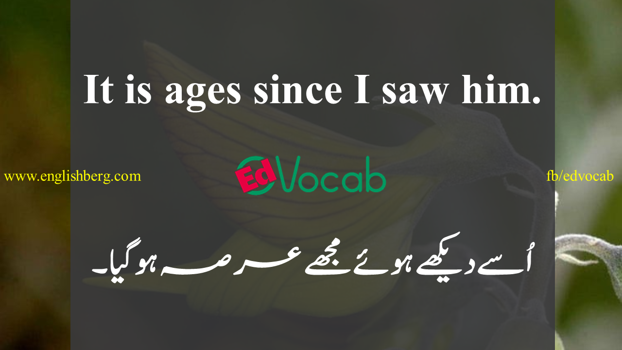 Small Sentence In English For Kid